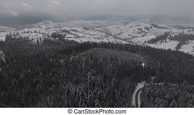 Road in the winter forest with driving cars. Aerial panoramic view.