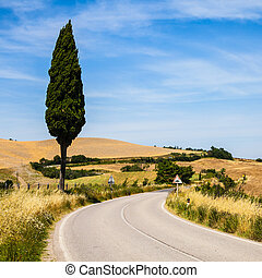 Road in Tuscany