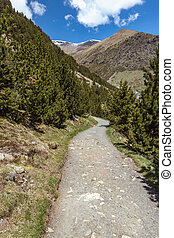 Road in very nice valley from Spain, mountain Pyrenees (name Vall de Nuria)