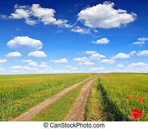 Road in wheat field