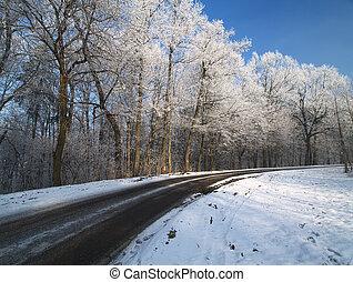 Road in winter.