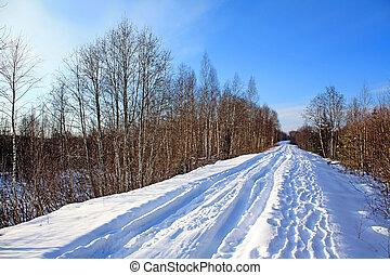 road in winter wood