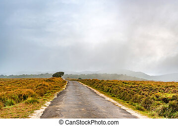 Road leading to Horton Plains, Sri Lanka - Beautiful...