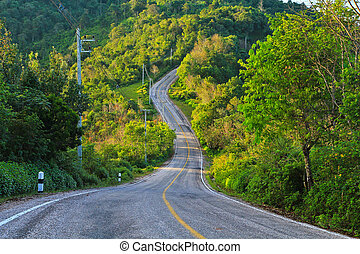 Road  mountain and forest in Chiang Mai thailand
