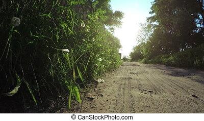Road near fence