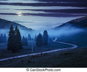 road near fir forest in foggy mountains at night - road on...