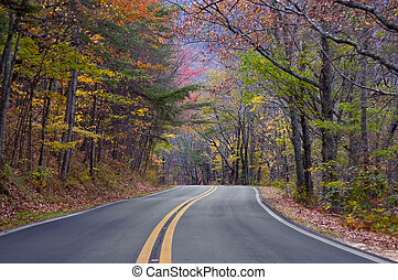 Road of Color - Alabama mountain road with fall colors