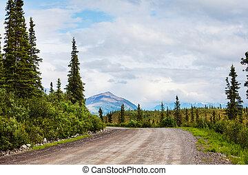 Road on Alaska - Highway in Alaska, United States