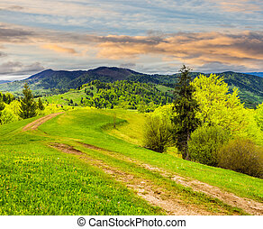 road on hillside meadow in mountain at sunrise