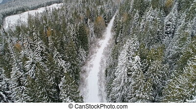 Road passing through the snow covered pine forest 4k -...