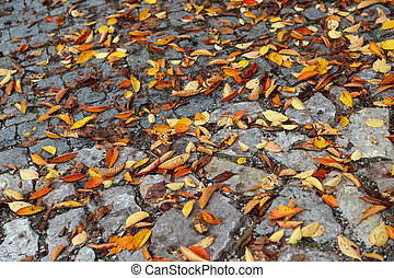 Road paved with stones and bright autumn leaves