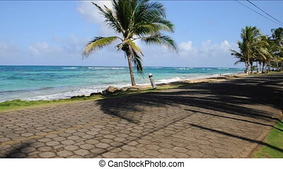 road Sallie Peachie beach Nicaragua - the only road Big Corn...