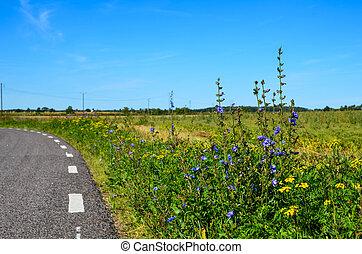 Road side flowers