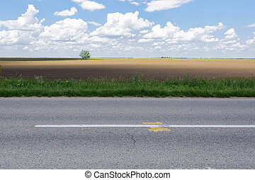 Road side view fields in summer