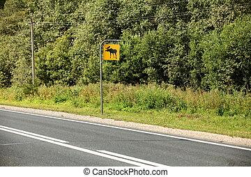 Road sign attention elk