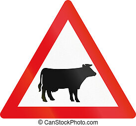 Road sign used in the African country of Botswana - Cattle