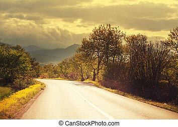 Road - road in prairie