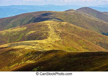 road through a mountain range - winding road through meadows...