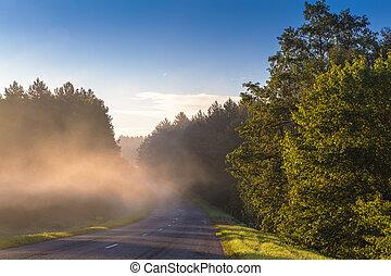 Road through fog
