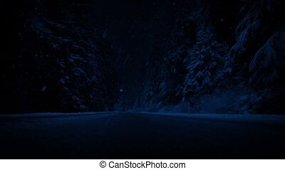 Road Through Forest In Snowfall At Night - Road in the...