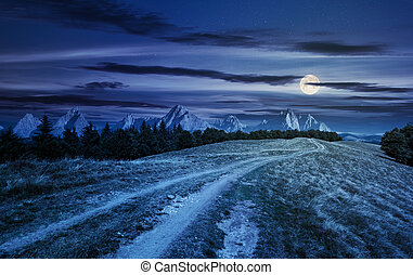 road through forested mountain ridge at night in full moon...