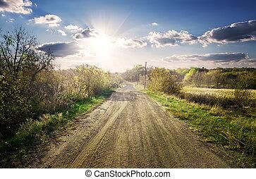 Road through garden