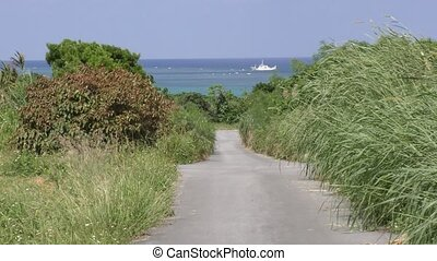 Road through grass field toward fishing boat on sea in...
