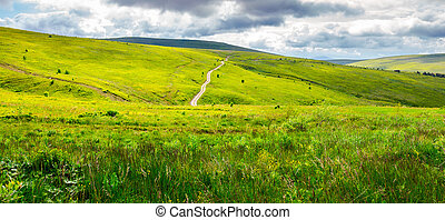 road through grassy hillside. beautiful panorama of summer...