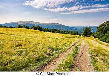 road through grassy meadow in mountains. beautiful summer...