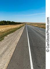 Road through meadow