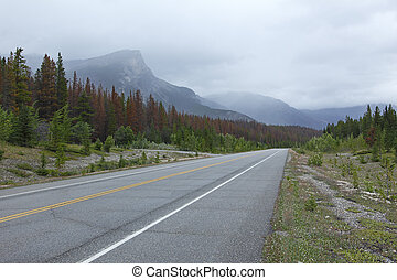 Road through Rocky Mountains in Banff National Park