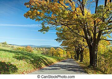Road through the autumn landscape