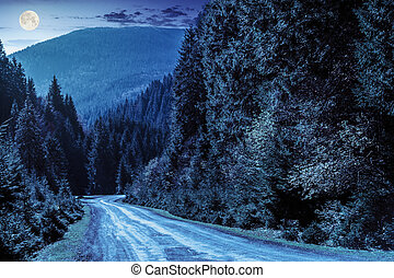 road through the forest in mountains at night - asphalt road...