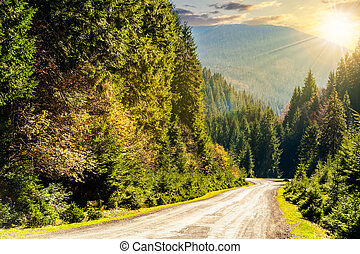 road through the forest in mountains at sunset - asphalt...