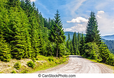 road through the forest in mountains - old cracked asphalt...