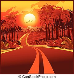 Road through the jungle at sunset