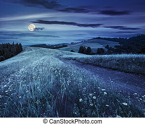 road through the meadow on hillside at night