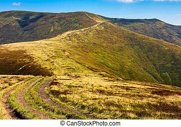road through the mountain ridge - summer mountain landscape....