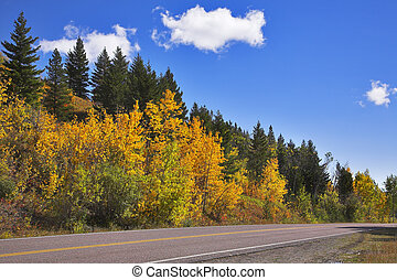 "Road to national park ""Glacier"""