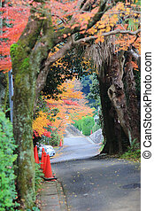 road to Nison in Temple, Kyoto, Japan