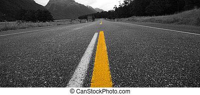 Rural road in New Zealand
