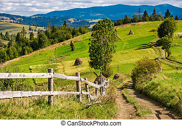 road to rural fields on hills in mountainous area - rural...