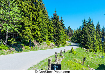 Road towards the top of Brocken Mountain in Germany