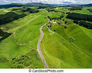 Road trip on rolling hill in Rotorua, New Zealand.