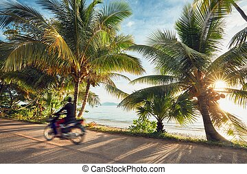 Road trip on the tropical island