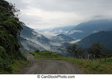 Road trough cloudforest Ecuador mountains - Road trough...