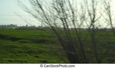 road view of green fields and trees