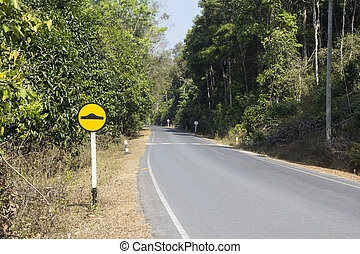 Road with camber sign