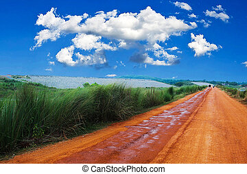 road with long green grass and cloud sky