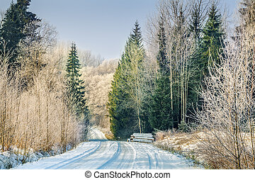 Road with snow through the woods